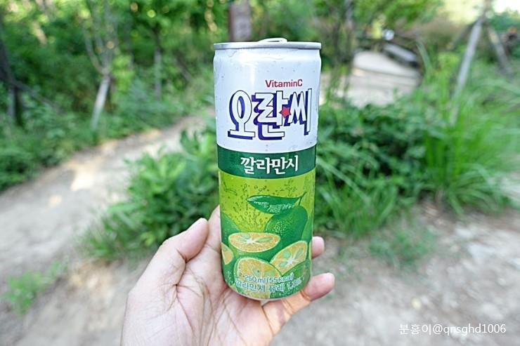 [락앤락써포터즈] 비타민 톡톡!! 오란씨 깔라만시 상큼하네