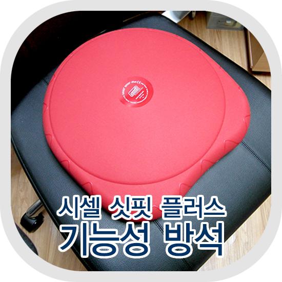 [제품후기] 기능성 방석 시셀 싯핏 플러스 (운동방석/자세교정)